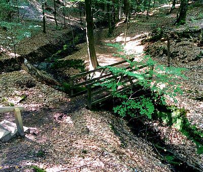 Eine kleine Schlucht mit Brücke auf dem Waldlehrpfad Vosspäddken in Bippen im Osnabrücker Land.